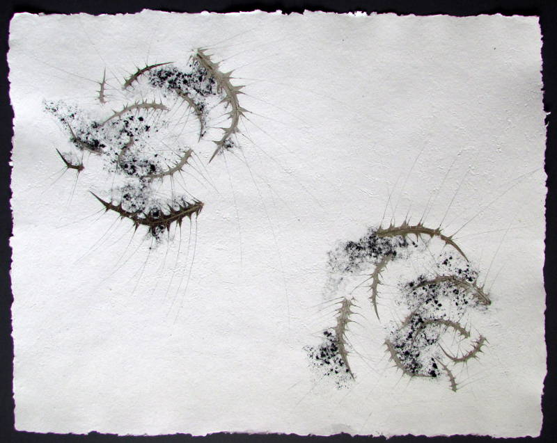 Komplizierte Annäherung, 2015, Recyclingbütten, Distel, Tusche, 60x80 cm