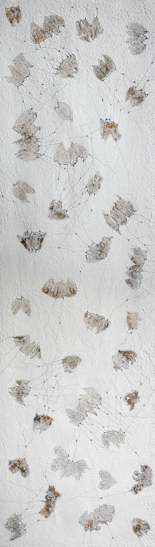 Physalis Kontakt groß, 2012, Recyclingbütten, Physalis, Tusche, 150x40 cm in Acryllglas gerahmt